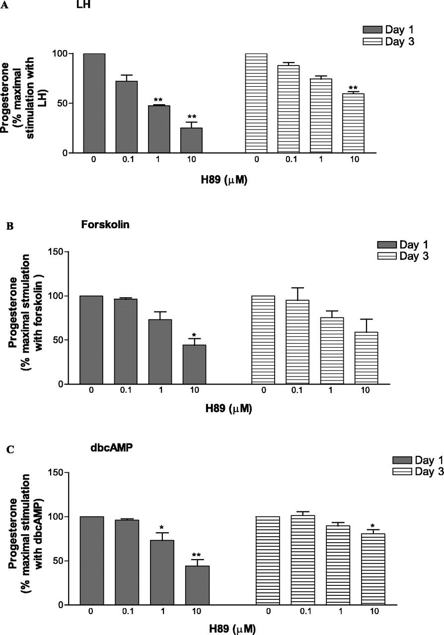 forskolin luteinizing hormone
