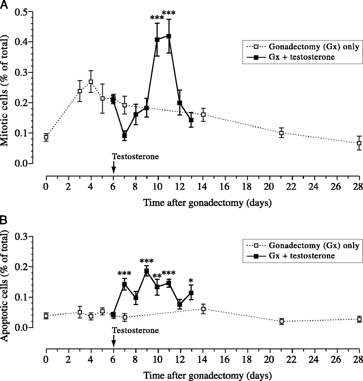 The effects of testosterone and oestrogen on gonadectomised and
