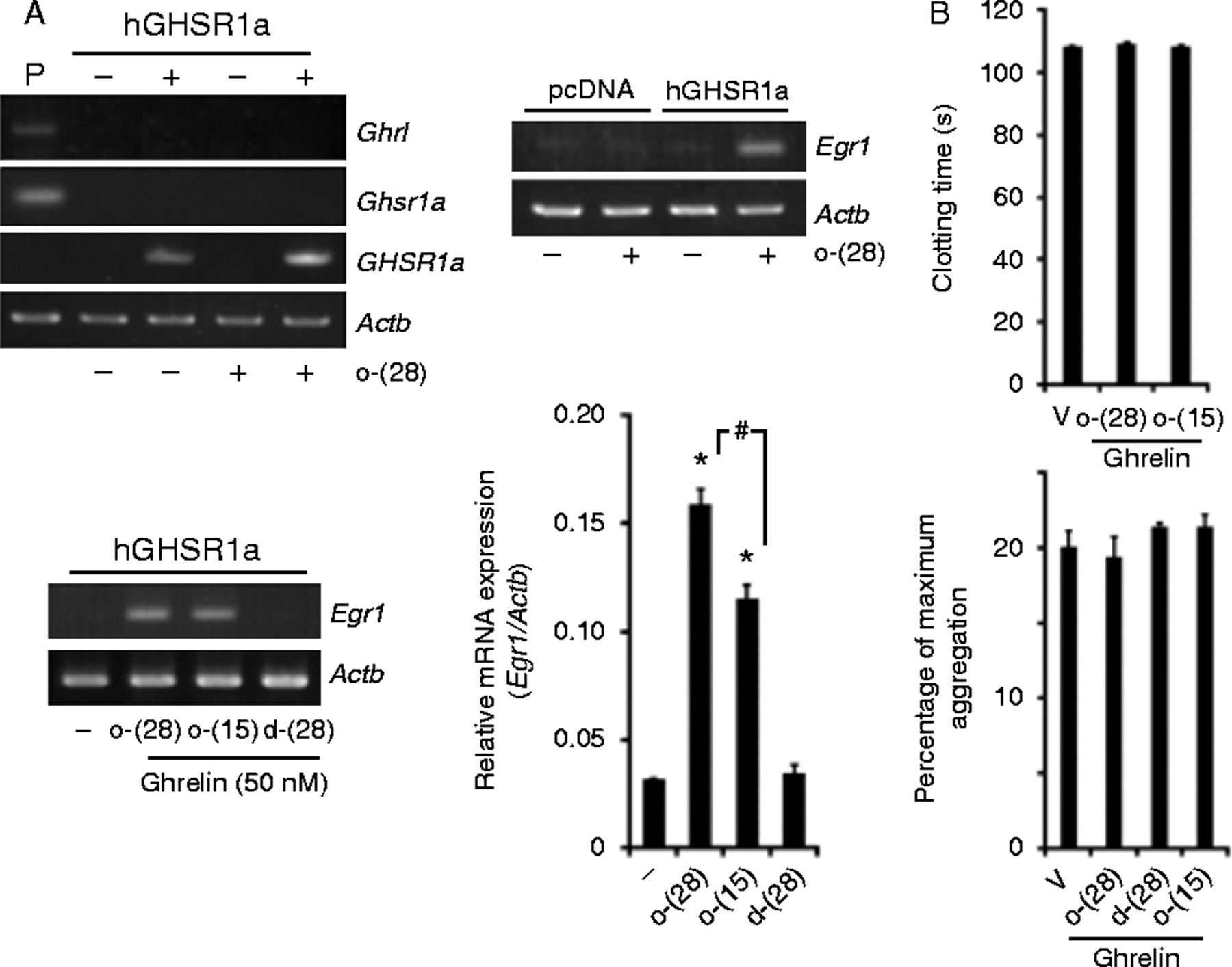 Identification Of Activated Protein C As A Ghrelin Endopeptidase In Wiring Diagram Lowe 165 Fm Figure 8
