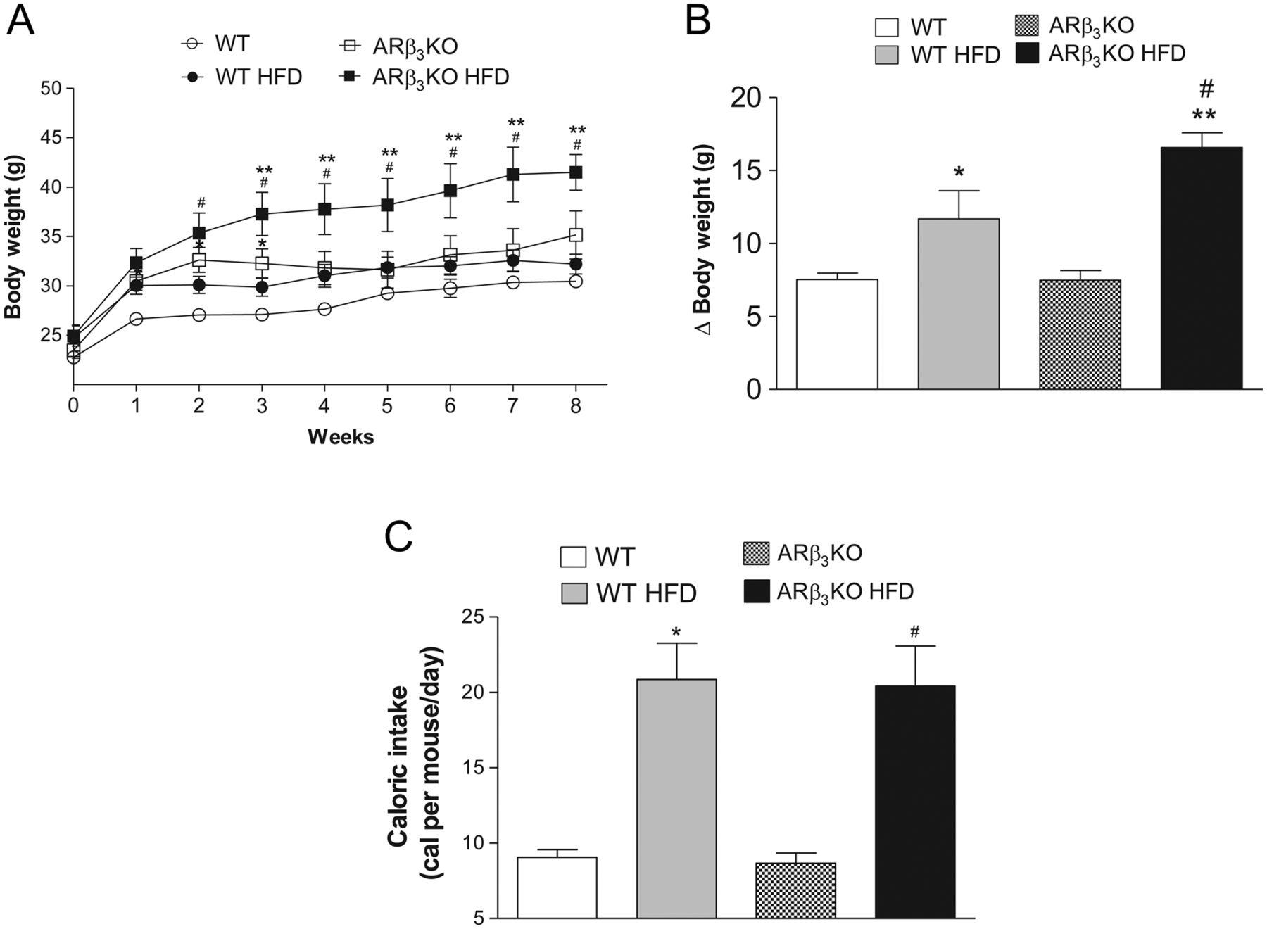 Disruption of beta3 adrenergic receptor increases
