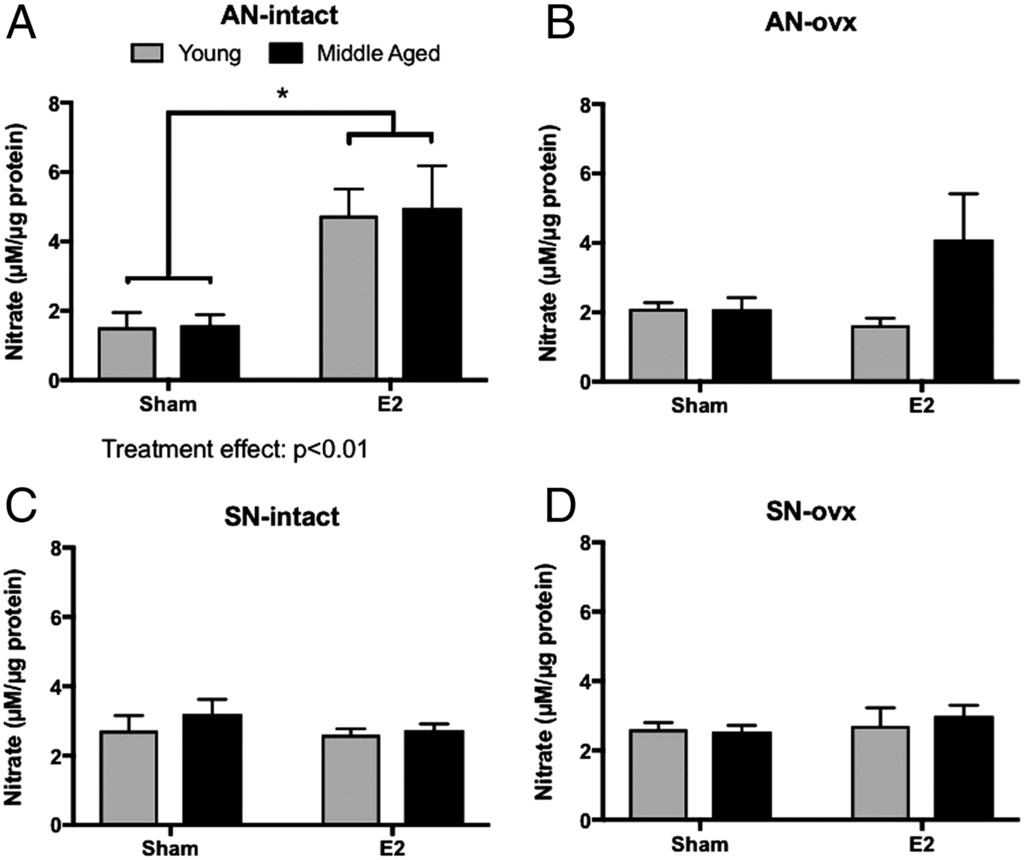 Chronic estrogen affects TIDA neurons through IL-1β and NO