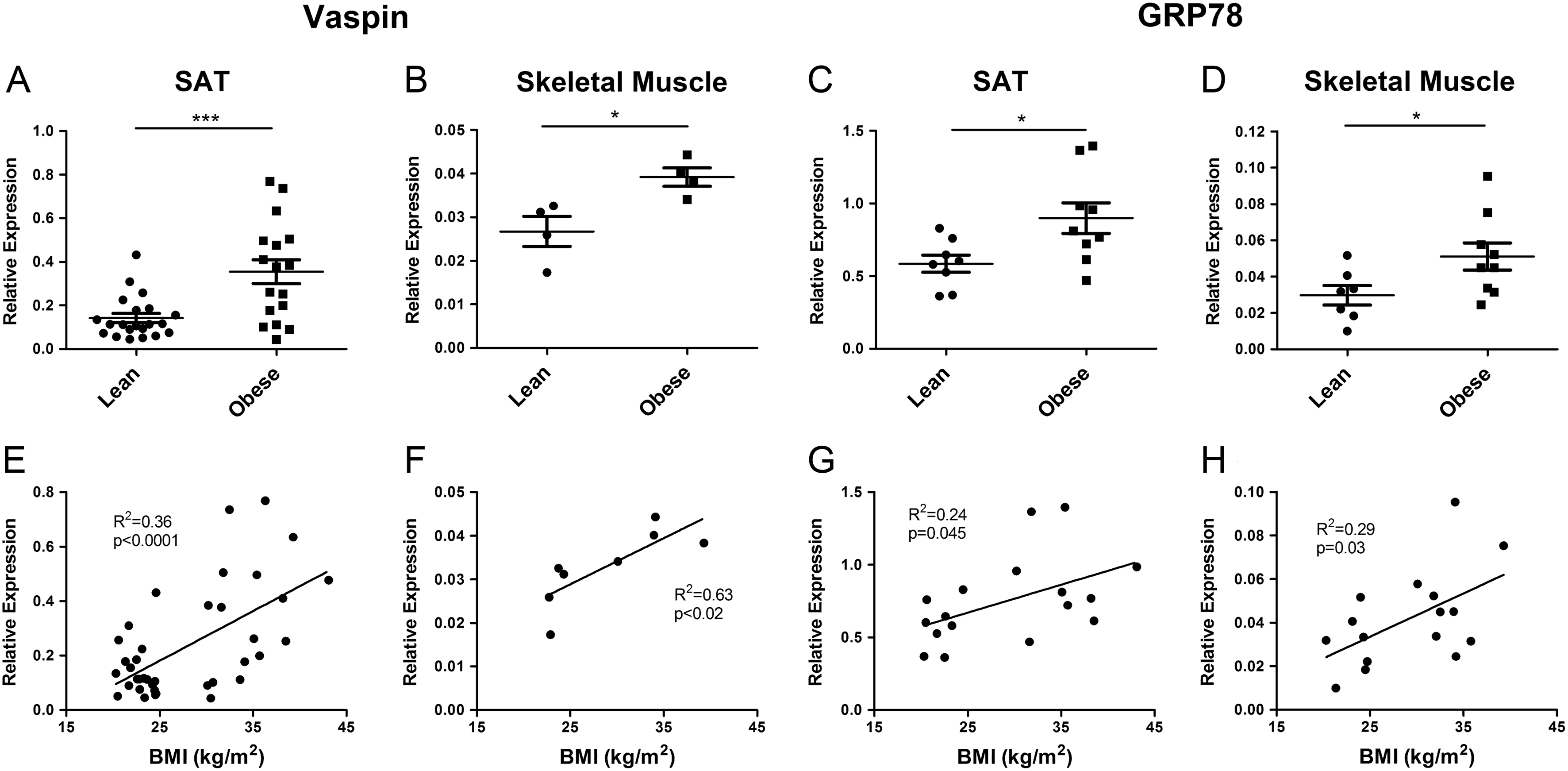 Vaspin promotes insulin sensitivity in elderly muscle and is